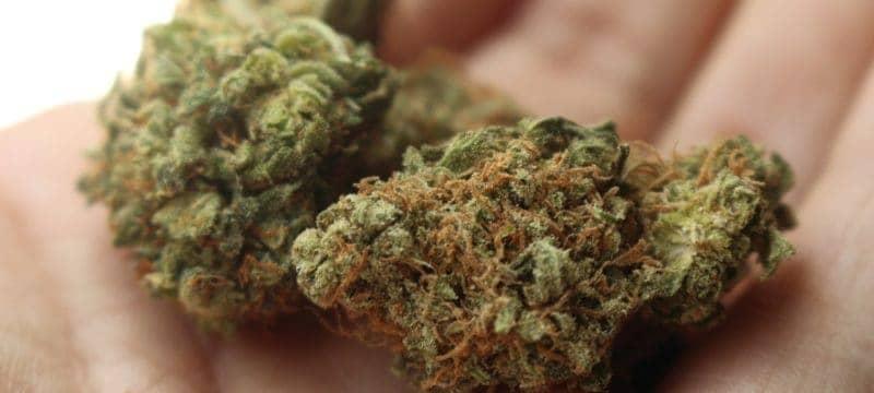 Jazda pod wpływem narkotyków